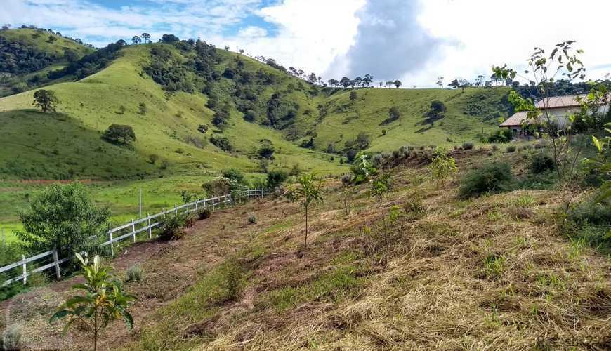 Lote a 1.5 km do centro de São Bento do Sapucaí