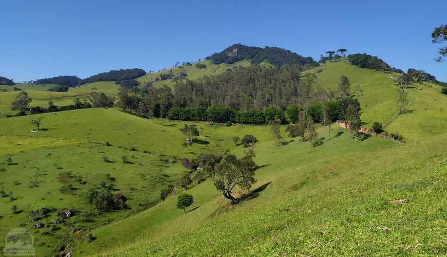 Areá Rural